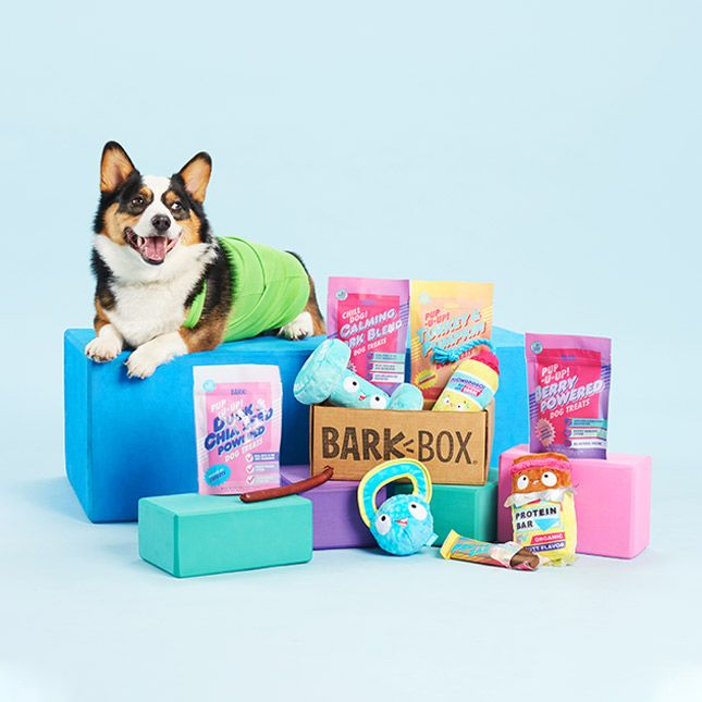BarkBox offers a totally customized box of themed toys and treats for your pup - every month