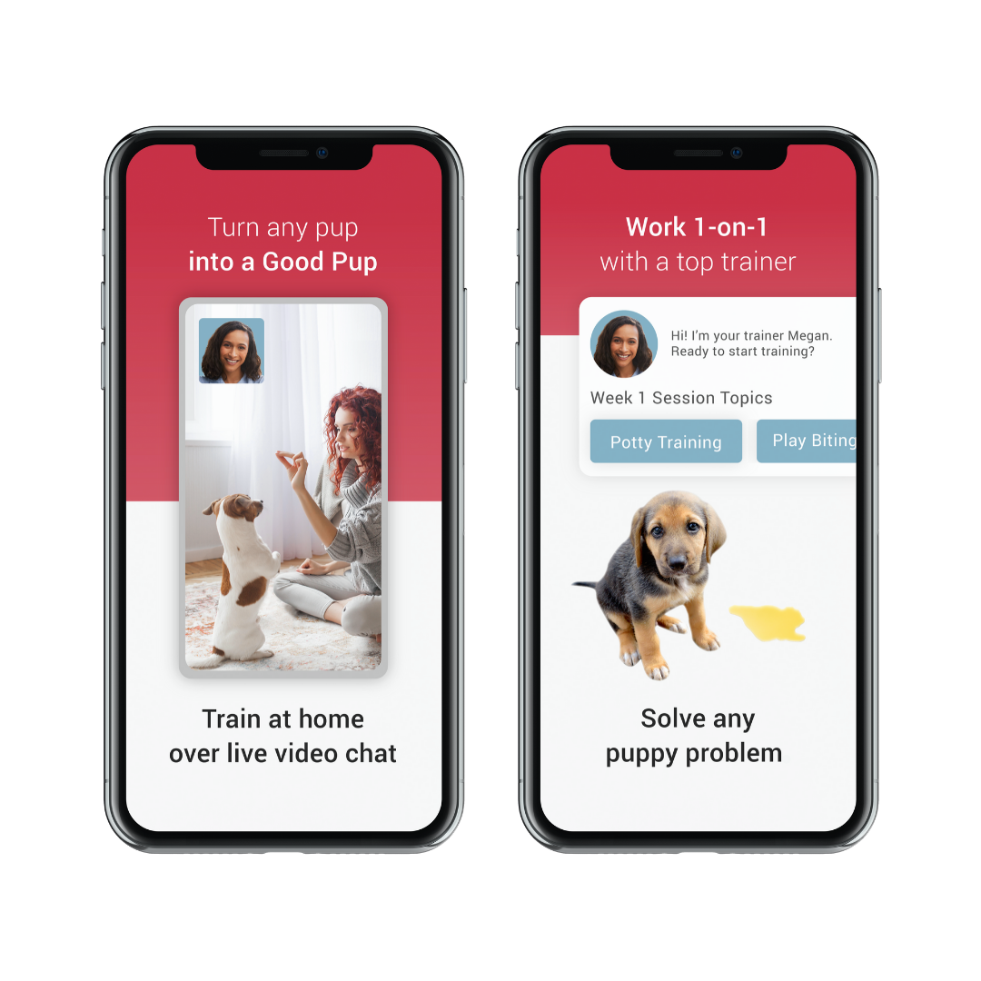 Get help training from top trainers on GoodPup